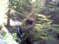 榛名神社・瓶子滝(みすずのたき)と榛名川